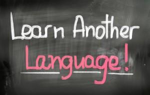 cours de langues adultes